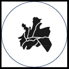 KIRDARC 2019 Stat